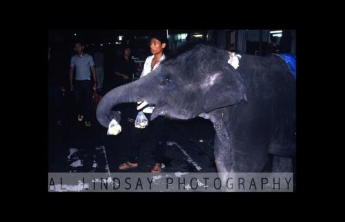 Bangkok, Thailand #3 (SQUARE) 0214