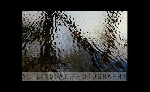 Basingstoke Canal #3